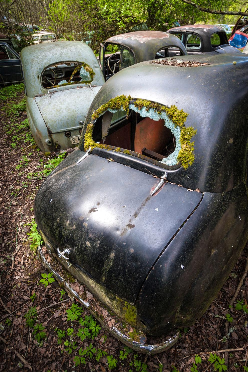 carros-abandonados-11