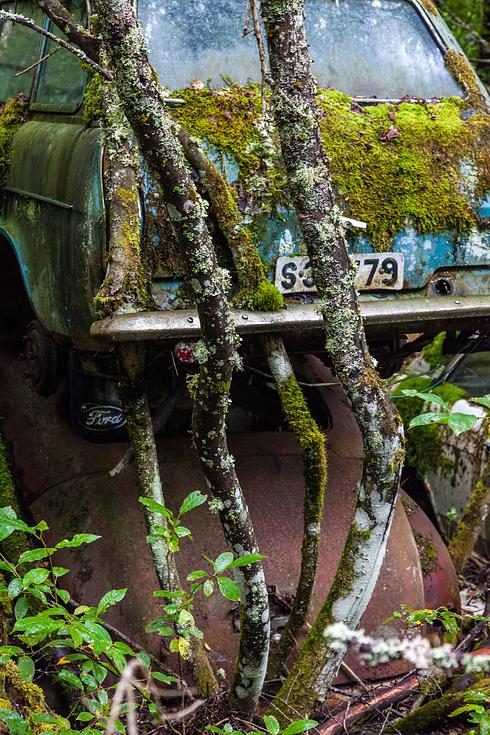 carros-abandonados-8